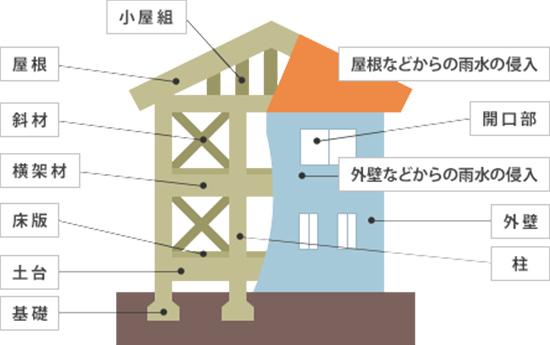 小屋組、屋根、斜材、横架材、床版、土台、基礎、屋根などからの雨水侵入、開口部、外壁などからの雨水侵入、外壁、柱